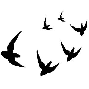 Raamstickers Vogelvlucht